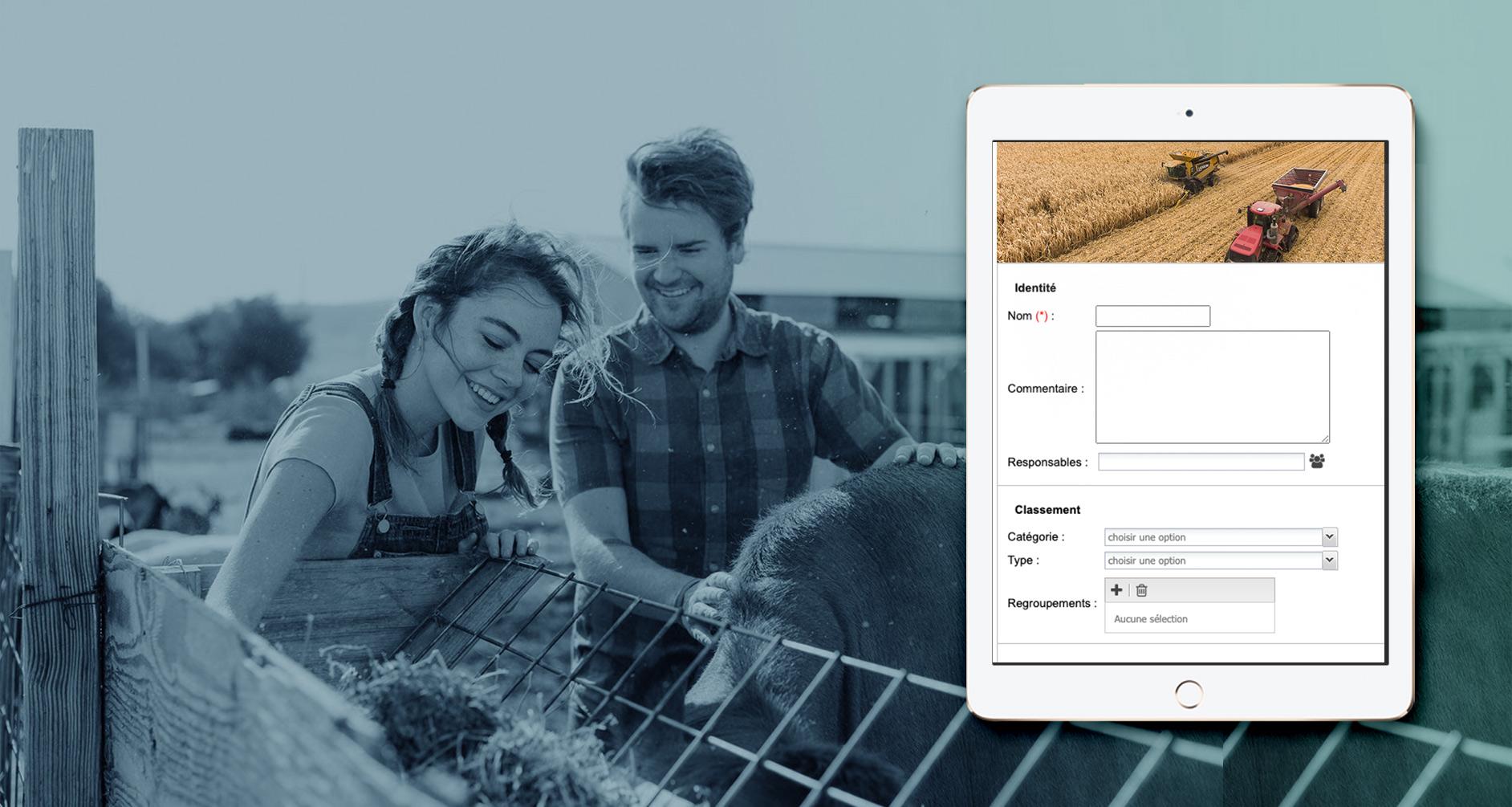 Capture d'écran du tableau de bord pour l'agroalimentaire SSE sur mobile